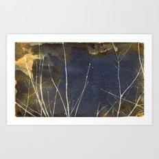 Mottled Twigs Art Print