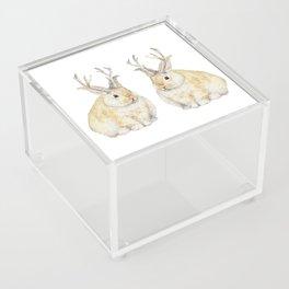 Watercolor Grumpy Jackalope Antler Bunny Acrylic Box
