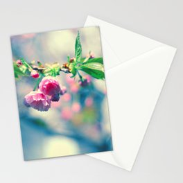 Flowers in the window 02 Stationery Cards