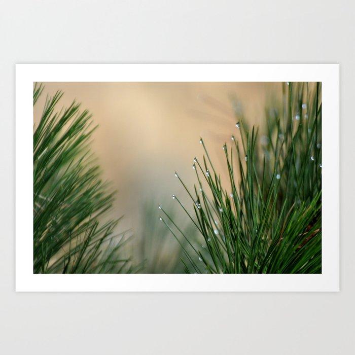 RAINDROPS ON GRASS Art Print