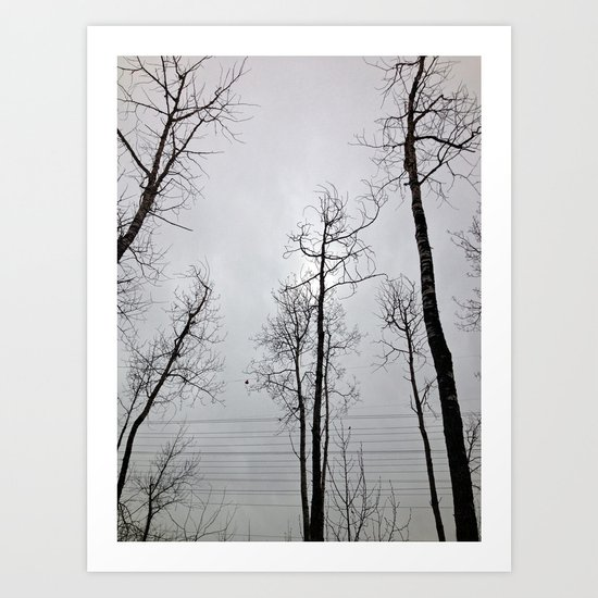 Bare Trees  series (8) Art Print