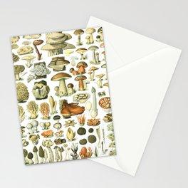Vintage Mushroom Botanical Chart 1 Stationery Cards