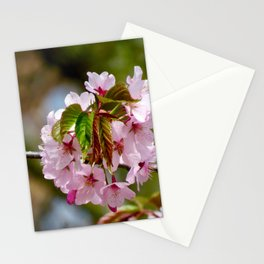 soft pink blossom - botanical photo #society6 Stationery Cards