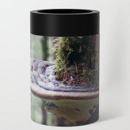 Magical Fungi World   Nature Photography Can Cooler
