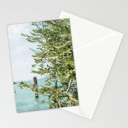 Olive tree by the turqoise ocean | Travel photography Italy | Fine art photo print Stationery Cards