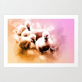 Cygnets Huddle Together Art Print