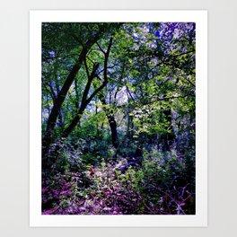 Pleasure of the Pathless Woods Art Print