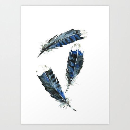 Blue Jay Feathers, Unadorned Art Print