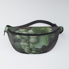 Grapevine Fanny Pack