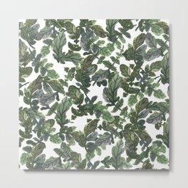 Beetroot Leaves Metal Print