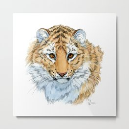 Young Sweet Tiger Metal Print
