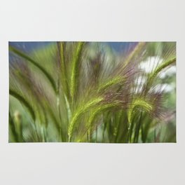 Ripened cheatgrass in green and pink Rug