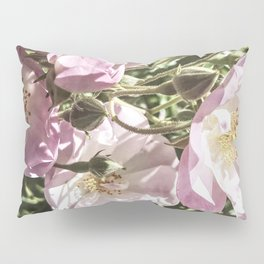 Cool And Luminous Summer Roses Pillow Sham