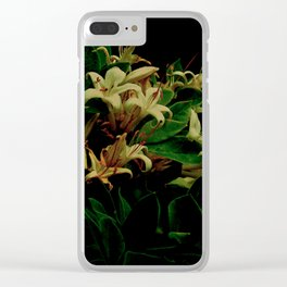 Evening Honey Clear iPhone Case