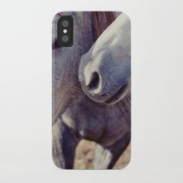 Horse Kisses iPhone Case
