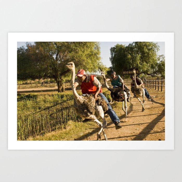 Course d'Autruches // Ostrich Racing Art Print