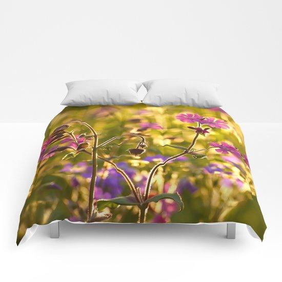 Summer Dream Comforters