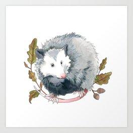 Possum and Oak Leaves Art Print