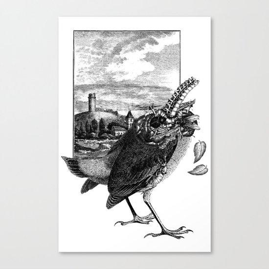 Decapitated bird Canvas Print
