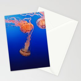 Jelly Stationery Cards