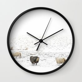Icelandic Sheep V Wall Clock