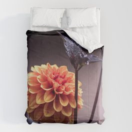 Treasure of Nature V Comforters