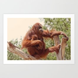 Rock me, Momma Art Print