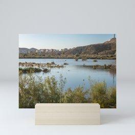 Panoramic evening view of Salar de los Canos Mini Art Print