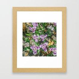 JC FloralArt 04 Framed Art Print