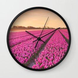 Tulip fields at sunrise Wall Clock