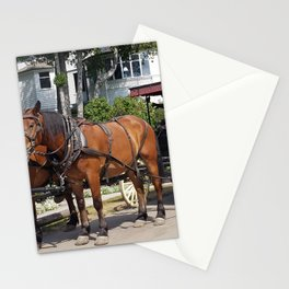 Horse and Carriage on West Bluff of Mackinac Island, Michigan Stationery Cards