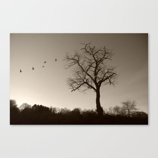 Melancholy in December Canvas Print