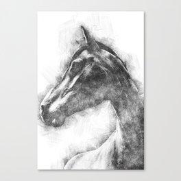 Horse Pen drawing Canvas Print