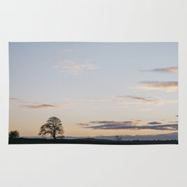 Tree on a hilltop above Matlock silhouetted at twilight. Derbyshire, UK. Rug
