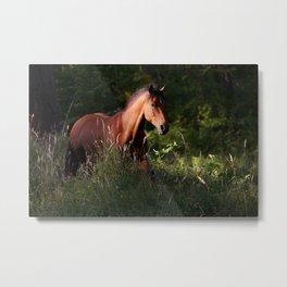 forest runner Metal Print