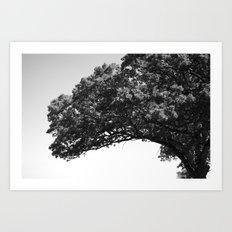 Wis. Art Print