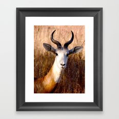 you lookin' at me?  Framed Art Print