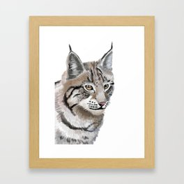 Lynx Cat Framed Art Print