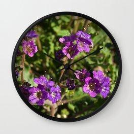 Notch-Leaved Phacelia - Desert Wildflower Wall Clock