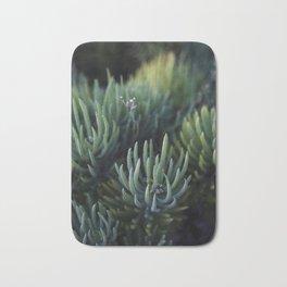 Ombre Succulents Bath Mat