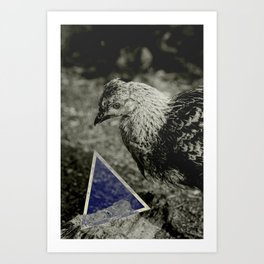 Longing Chicken Art Print