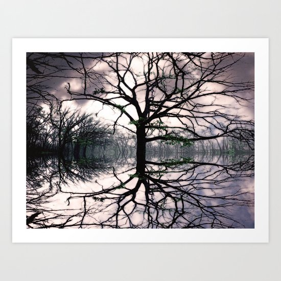 Roots in the Sky Art Print
