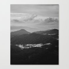 a dark earth Canvas Print