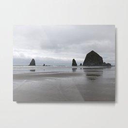 Grand Oregon Coast Metal Print
