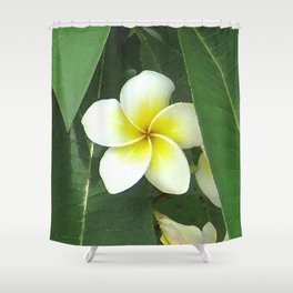 Plumeria Extreme Shower Curtain