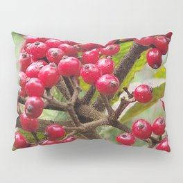 Wild fruit of Oreum , Jeju Island, Korea. Pillow Sham