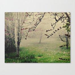 [15] Canvas Print