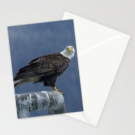 Bald Eagle of Resurrection Bay, No. 2 Stationery Cards