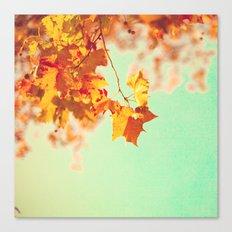 Orange leafs over turquouise Canvas Print