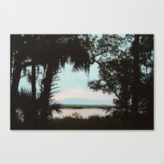 Cumberland Island Canvas Print